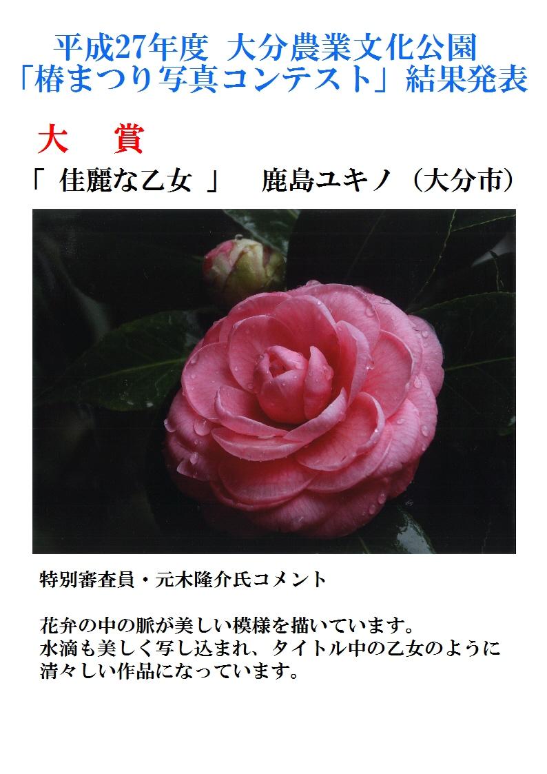 16.06椿まつり写真コンテストHP用受賞作品発表A4