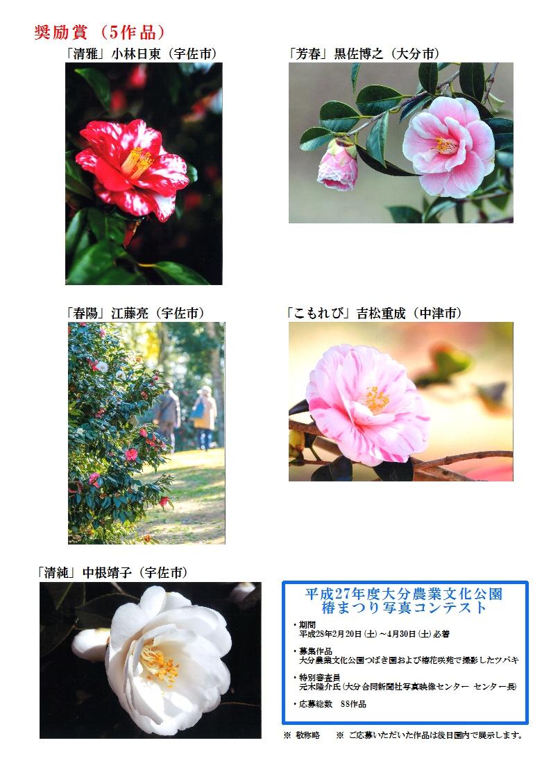 16.06椿まつり写真コンテストHP用受賞作品発表A43