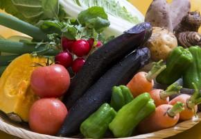 おおいたの食材・野菜