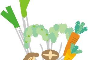 170928秋冬野菜