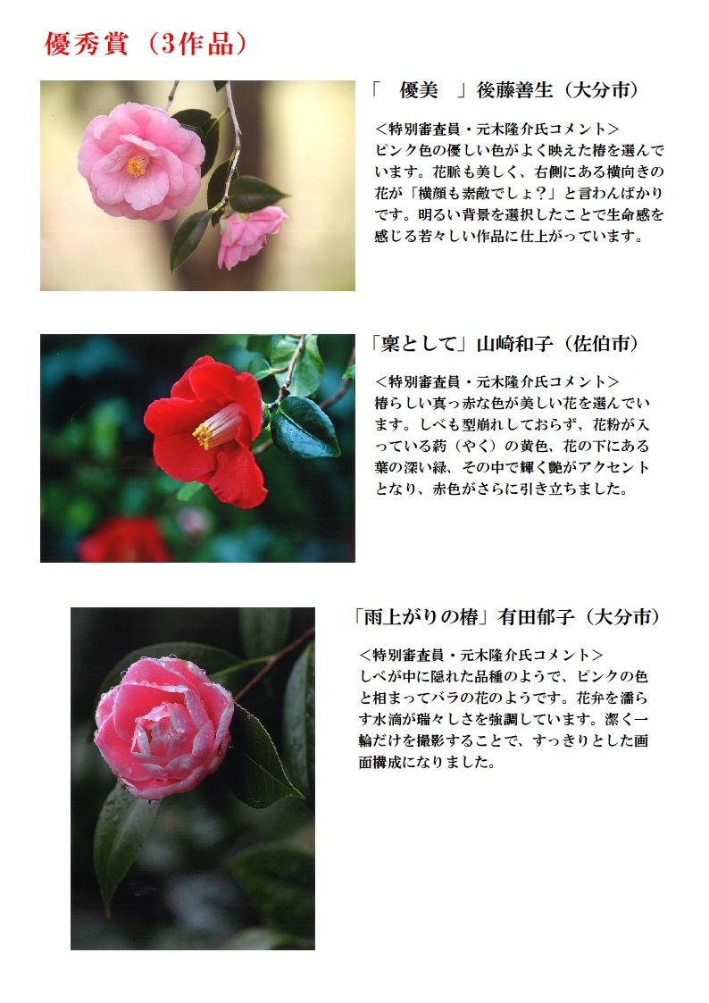 18.06椿まつり写真コンテストHP用受賞作品発表A4-2