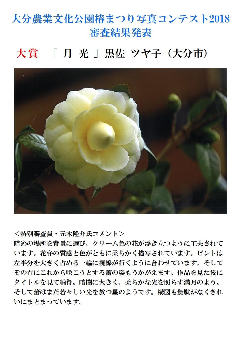 18.06椿まつり写真コンテストHP用受賞作品発表A4