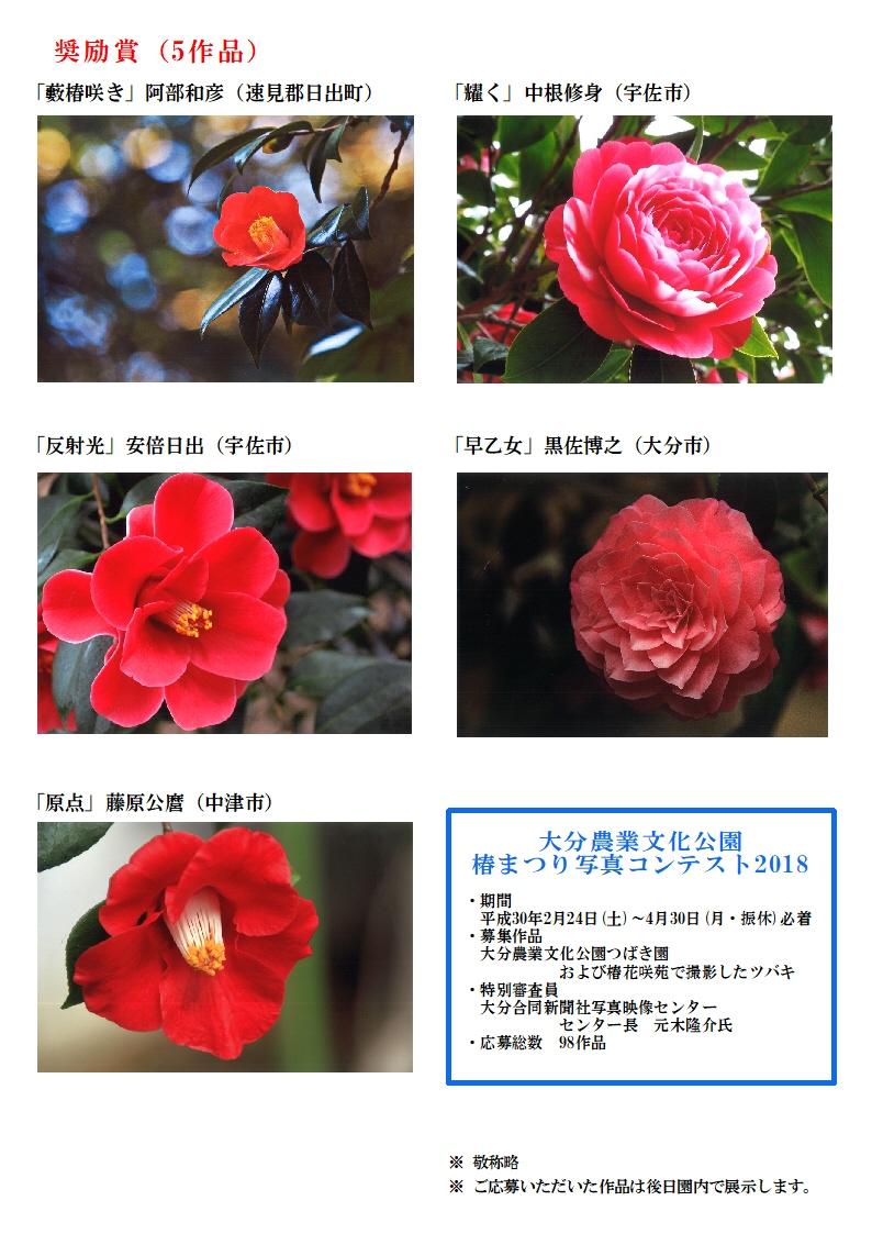 18.06椿まつり写真コンテストHP用受賞作品発表A4-3